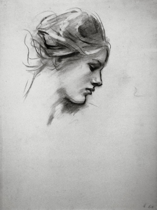 1895-1916 Female Head in Profile charcoal on blue laid paper 61.7 x 46.6 cm Harvard Art Museums-Fogg Museum, Cambridge MA